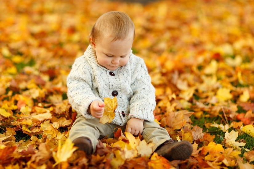 autumn-fall-baby-boy-child-40893
